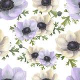 Modèle sans couture d'aquarelle avec des anémones de violette de whiteand Photographie stock libre de droits