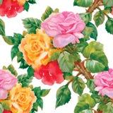 Modèle sans couture d'aquarelle avec des roses Photos stock
