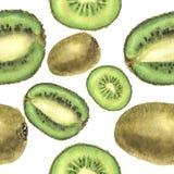 Modèle sans couture d'aquarelle avec le kiwi Pour la conception, la copie et le fond Illustration botanique Photo stock
