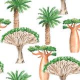Modèle sans couture d'aquarelle avec les arbres africains sur le fond blanc illustration de vecteur