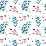 Modèle sans couture d'aquarelle avec les branches florales, les baies de dogrose et les fleurs bleues photos stock