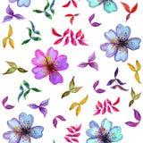 Modèle sans couture d'aquarelle avec les fleurs colorées et Images libres de droits