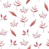 Modèle sans couture d'aquarelle des feuilles et de la sorbe rouges pour la copie Vibraphone de chute illustration libre de droits