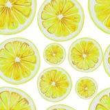 Modèle sans couture d'aquarelle des tranches de fruit de citron Photo libre de droits