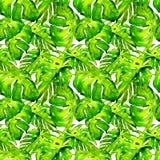 Modèle sans couture d'aquarelle Illustration peinte à la main des feuilles et des fleurs tropicales Motif tropical d'été avec Lia Image libre de droits