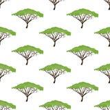 Modèle sans couture d'arbre d'acacia Photos libres de droits