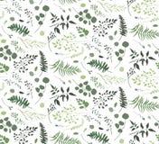 Modèle sans couture d'arbre différent de fougère de paume d'eucalyptus, feuillage illustration libre de droits