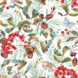 Modèle sans couture d'automne avec des branches de sorbe Images libres de droits