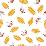 Modèle sans couture d'automne avec la sorbe illustration stock