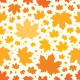 Modèle sans couture d'automne des feuilles d'érable Illustration de vecteur Image libre de droits