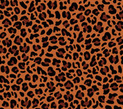 Modèle sans couture d'eopard illustration stock
