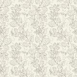 Modèle sans couture d'houblon. Image libre de droits