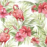 Modèle sans couture d'isolement tropical avec le flamant Illustration d'aquarelle d'aspiration de main Image stock