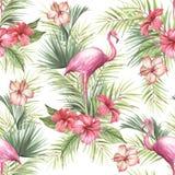 Modèle sans couture d'isolement tropical avec le flamant Illustration d'aquarelle d'aspiration de main Images libres de droits