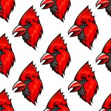 Modèle sans couture d'oiseau cardinal rouge Photos libres de droits