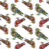 Modèle sans couture d'oiseaux colorés tirés par la main dans le style de zentangle Silhouette d'ornamental de couronne Modèle orn illustration stock