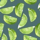 Modèle sans couture dans des couleurs vertes et marines avec des tranches de chaux illustration libre de droits