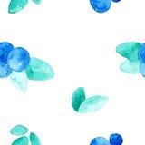Modèle sans couture de beau vecteur avec les myrtilles fraîches naturelles Aquarelle tirée par la main bleue, violette et verte l illustration stock