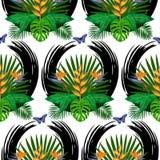 Modèle sans couture de bouquet tropical illustration libre de droits