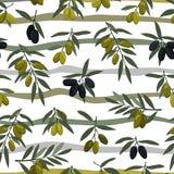 Modèle sans couture de branches d'olives avec les olives noires et vertes illustration libre de droits