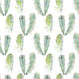 Modèle sans couture de cactus d'aquarelle Photo libre de droits