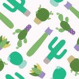 Modèle sans couture de cactus mignon Photographie stock