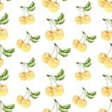 Modèle sans couture de cerises blanches d'aquarelle Image libre de droits