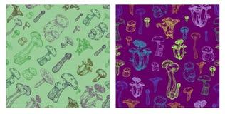 Modèle sans couture de champignon comestible illustration libre de droits