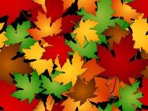 Modèle sans couture de chute de feuilles d'érable Photo libre de droits