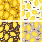 Modèle sans couture de citron avec des fleurs et des feuilles sur le fond beige Illustration de vecteur Photographie stock