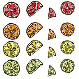 Modèle sans couture de citron d'agrume, orange, chaux, Grapefruite Images libres de droits