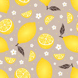 Modèle sans couture de citron sur le fond beige Illustration de vecteur Photographie stock
