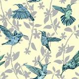 Modèle sans couture de colibri Fond coloré exotique tropical tiré par la main Illustration Stock