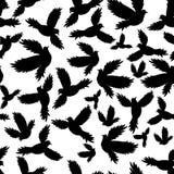Modèle sans couture de colombe sainte d'oiseaux Images stock