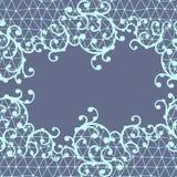 Modèle sans couture de dentelle avec les ornements floraux Images libres de droits