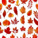 Modèle sans couture de feuillage d'automne illustration stock