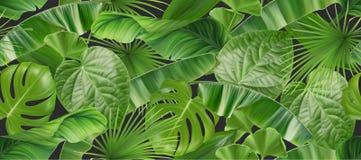 Modèle sans couture de feuillage de jungle, fond du vecteur 3d illustration libre de droits