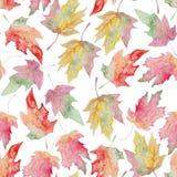 Modèle sans couture de feuille d'automne d'érable d'aquarelle illustration libre de droits