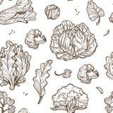 Modèle sans couture de feuilles de chou et de brocoli, de chou-fleur et de laitue illustration de vecteur