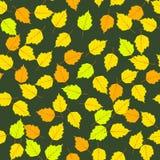 Modèle sans couture de feuilles d'automne Photos libres de droits