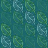 Modèle sans couture de feuilles fraîches dans le vecteur Fond sans fin de feuillage vert Image libre de droits