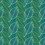 Modèle sans couture de feuilles fraîches dans le vecteur Fond sans fin de feuillage vert Photos stock