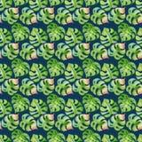 Modèle sans couture de feuilles tropicales Images stock