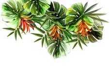 Modèle sans couture de fleurs de plantes tropicales illustration stock