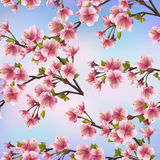 Modèle sans couture de fond avec l'arbre de Sakura Photo libre de droits
