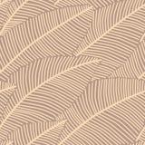 Modèle sans couture de fond avec les plumes abstraites Photos stock