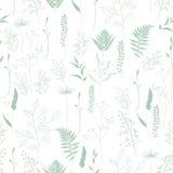 Modèle sans couture de fougère, arbre différent, branches naturelles de feuillage, feuilles vertes, herbes illustration stock