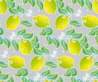 Modèle sans couture de fruit de citron sur le fond gris Photographie stock libre de droits