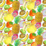 Modèle sans couture de fruit exotique tropical tiré par la main Photo stock