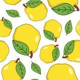 Modèle sans couture de fruit jaune de coing Image stock